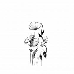 illustration coquelicots et...