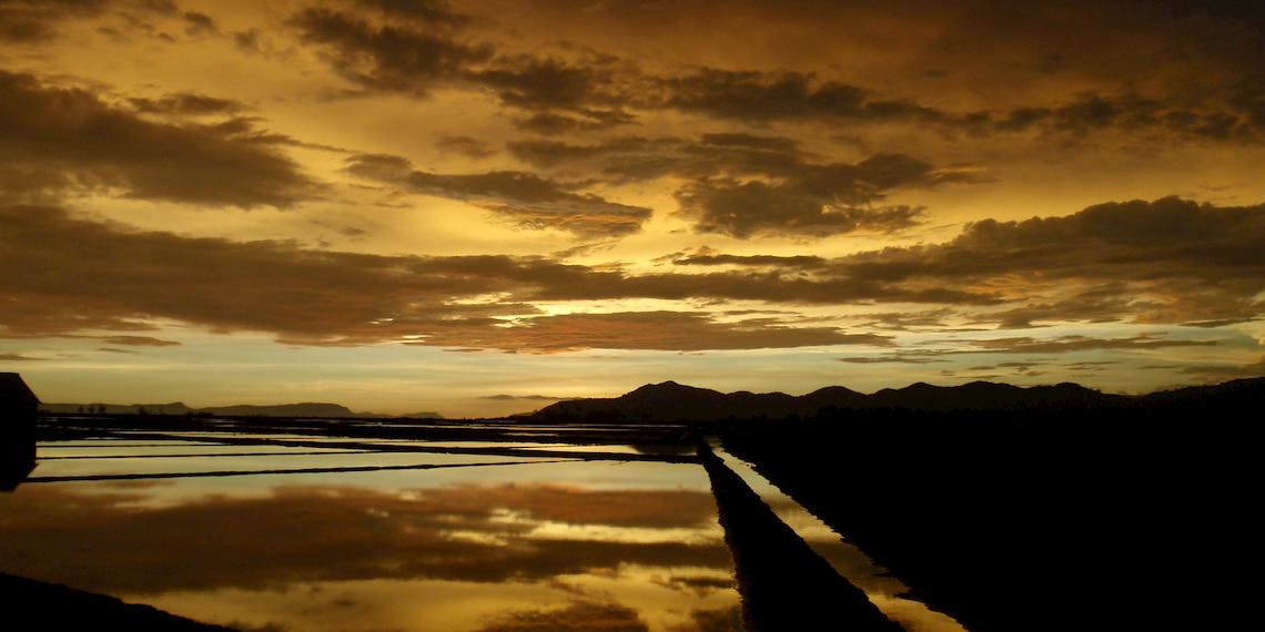 Sunset on salt marshes